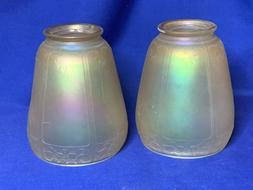 Victorian art glass iridescent floral and panel lamp shade p